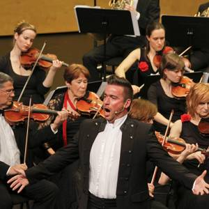 Sinfonia Heist Abend in Wien Diamond Symphonic  Willem Van der Heyden
