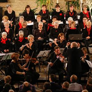 Sinfonia Heist kerstconcert  Diamond Chamber Orchestra André Walschaerts Elewijts Bachkoor