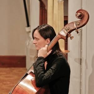 Sinfonia Heist kerstconcert  Diamond Chamber Orchestra