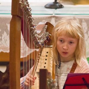 Sinfonia Heist Harpenconcert Harp Ensemble